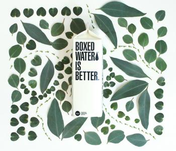 Foto de Diseño gráfico ético y ecológico